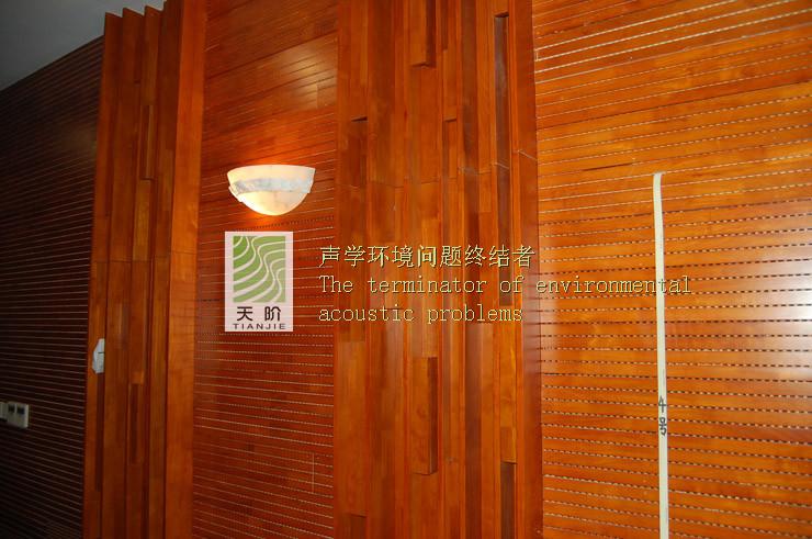 重庆西南政法大学视听室吸音工程案例
